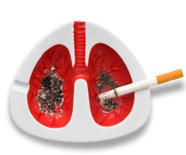 On this world no tobacco day 2012 tobacco is injurious to health